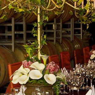 Private wine celler dinner