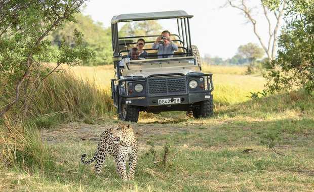 Luxury Combined Africa Journeys