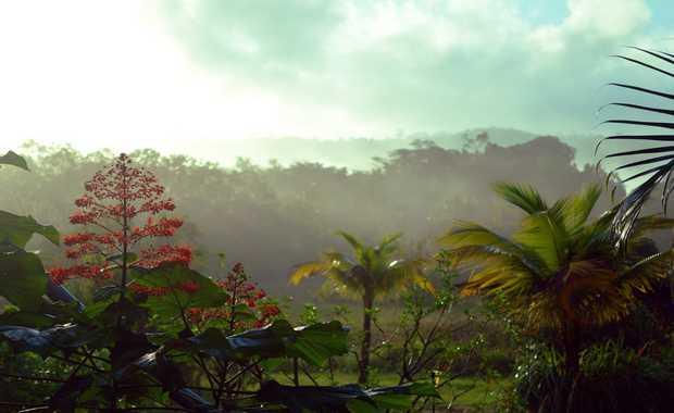 Luxury French Guiana Journeys
