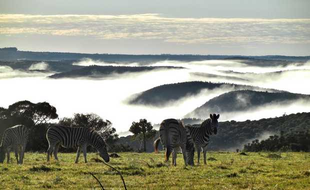 Luxury South Africa Journeys And Itineraries